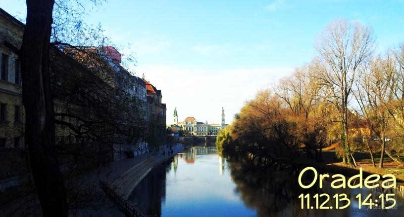 Oradea 11.12.13